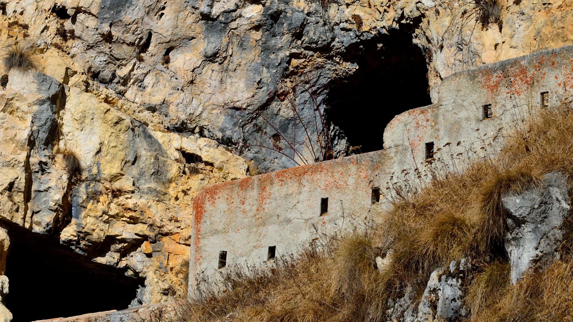 fortino Priaforà