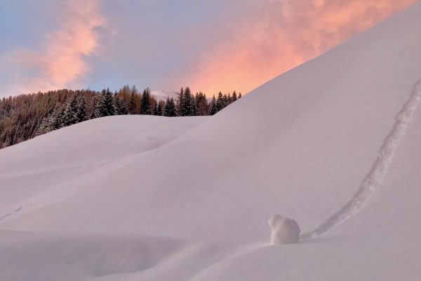 tramonto in Val Venegia