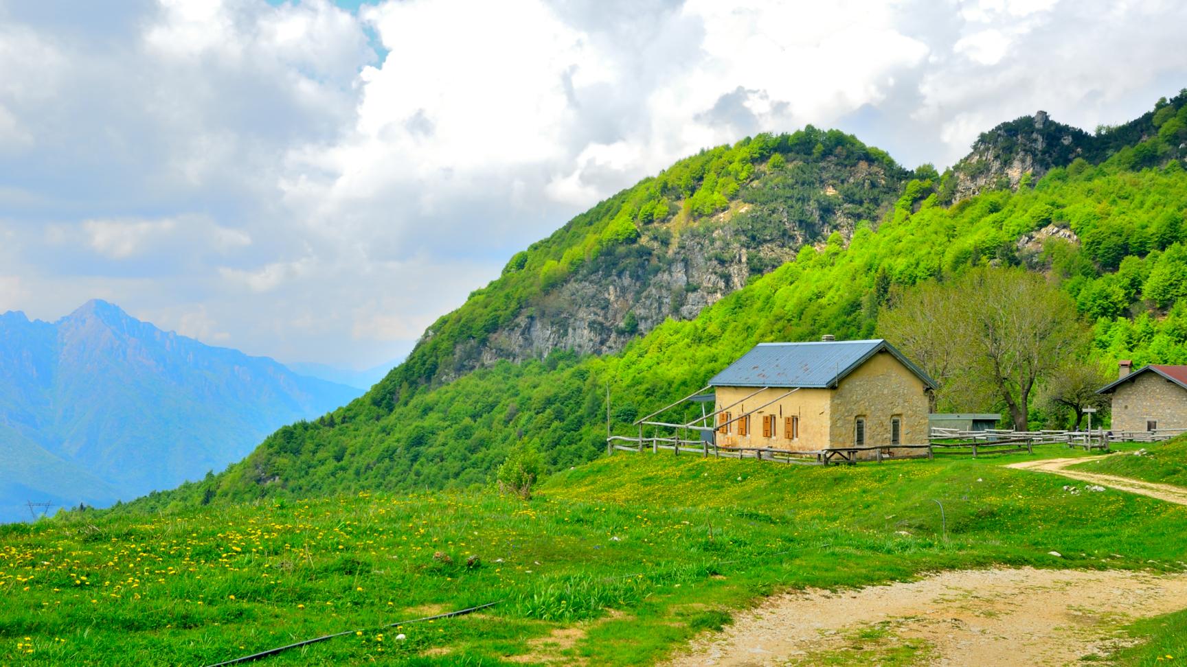Alpe di Campogrosso - Malga Boffetal