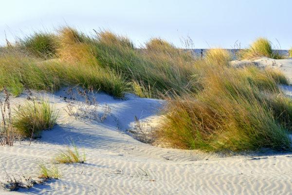 Spiaggia di Caroman