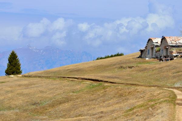 Malghe sull'Alpe Alba