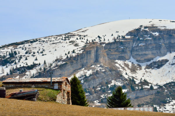 Malga sull'Alpe Alba e dietro il Col Santo