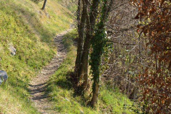 sentiero verso San Bovo