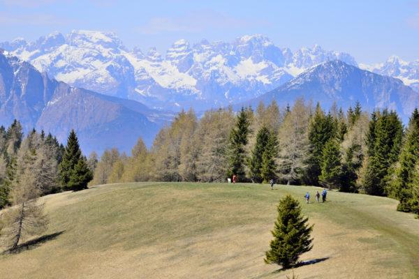 Camminando sull'Alpe Cimbra