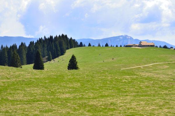 Malga II Posta, Alpe Cimbra