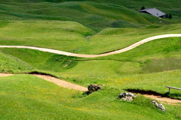 Sentiero scendendo da cima Seceda