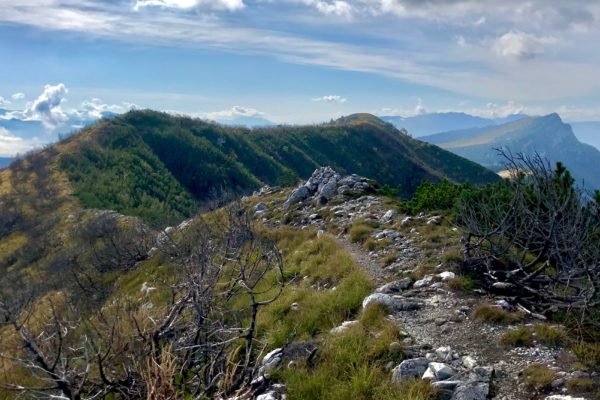 cresta di cima Larici