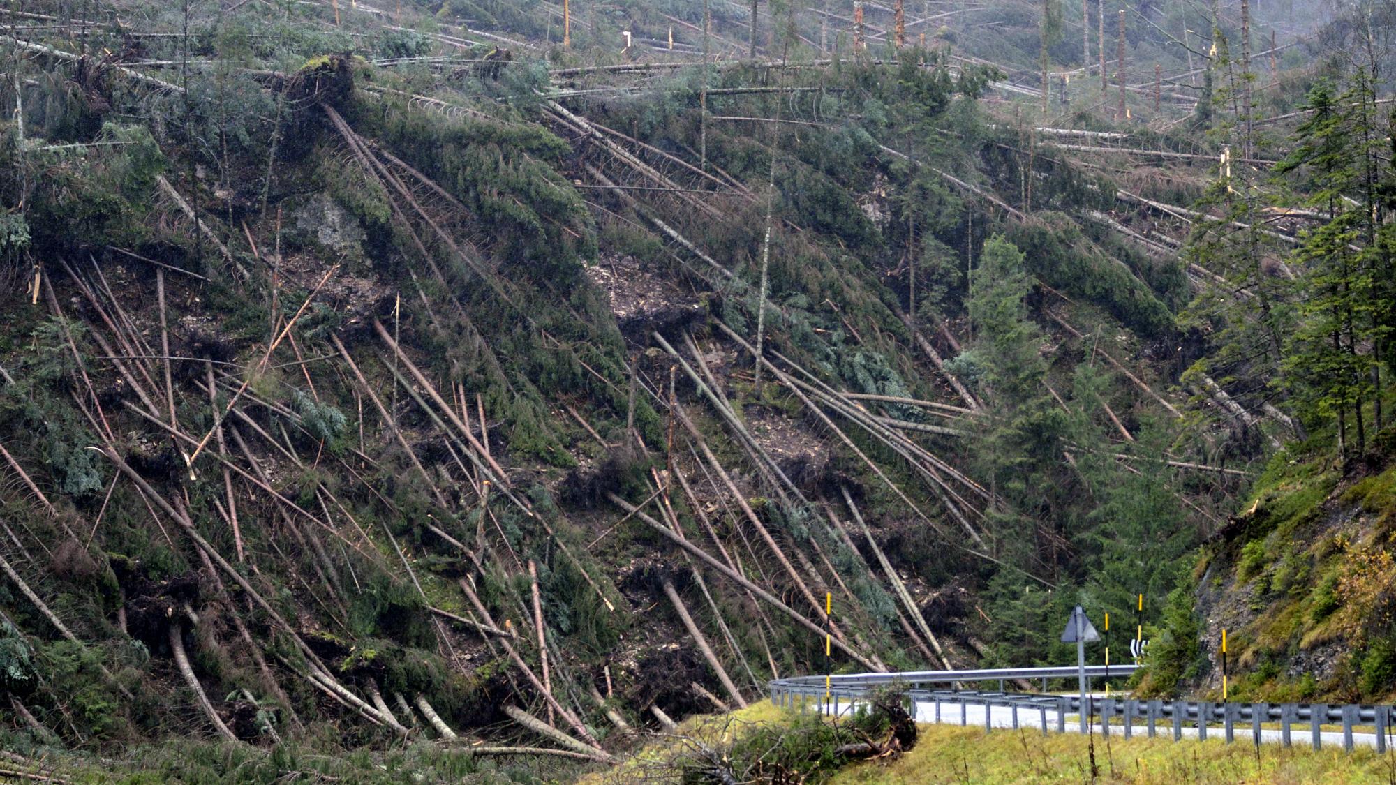 La devastazione lascaiata dalla Tempesta Vaia
