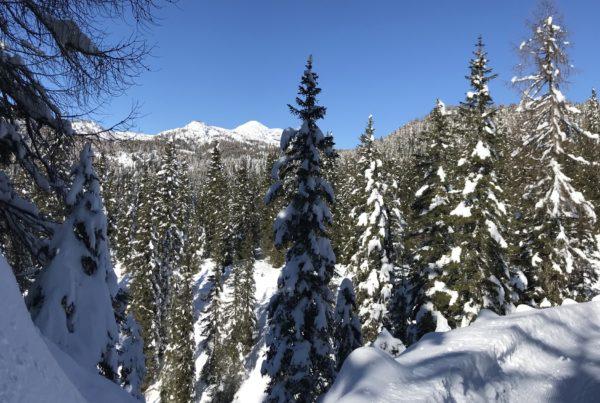 neve verso l'Ortigara