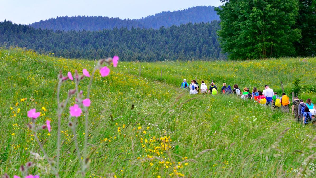 10 bellissime escursioni in Altopiano di Asiago