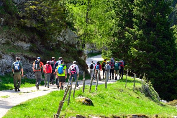 escursione sul Monte Zebio