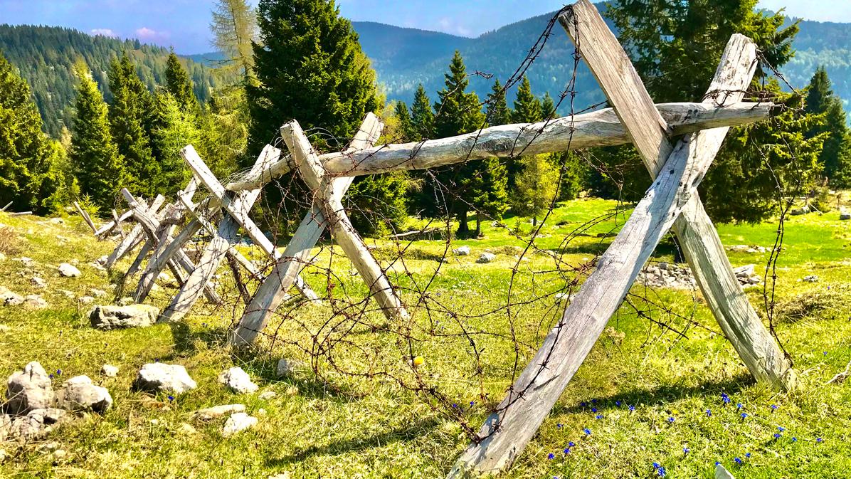 Monte Zebio cavalli di frisia