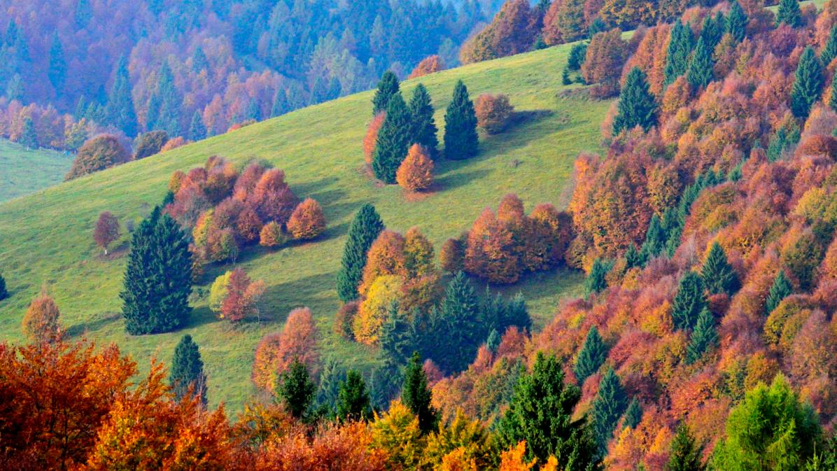 escursione foliage in Valbella