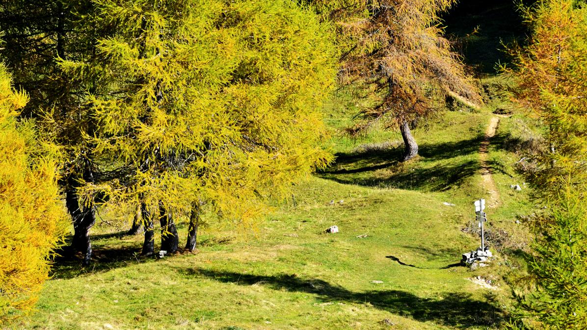 sentiero Monte Corno Battisti