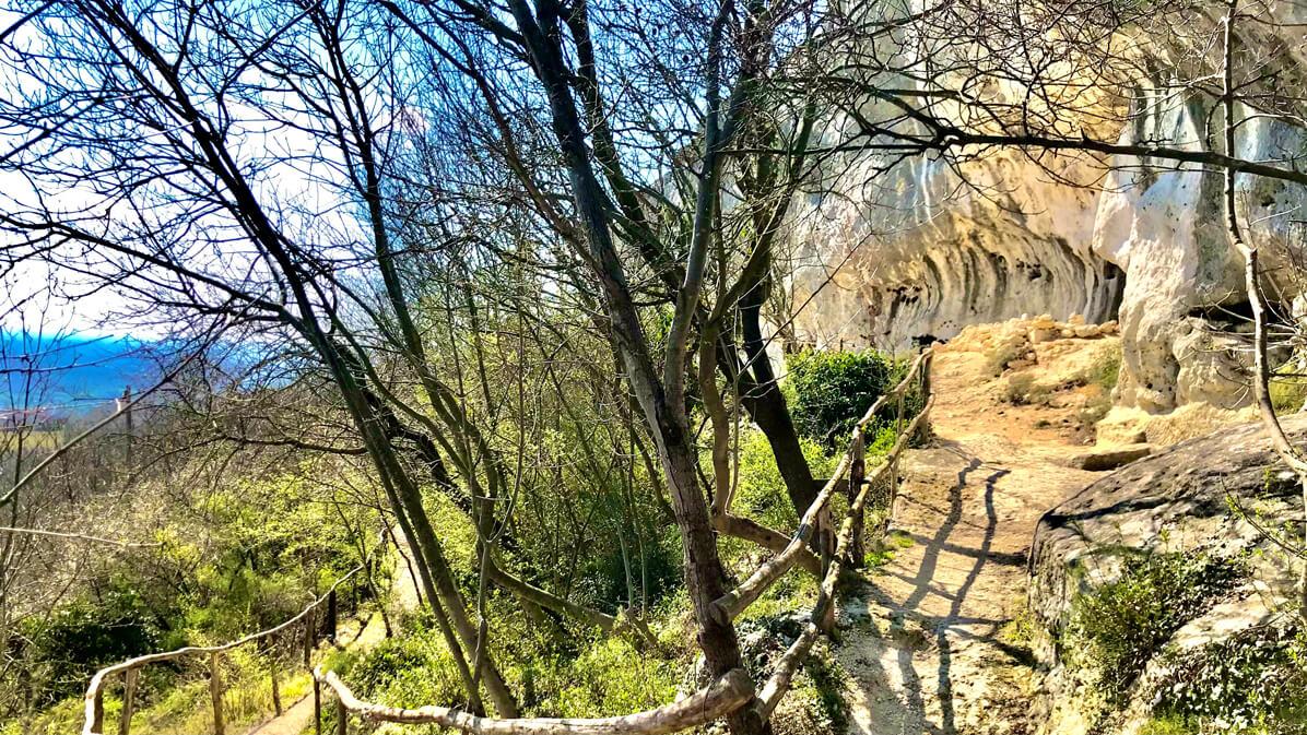 sentiero nei Colli Berici