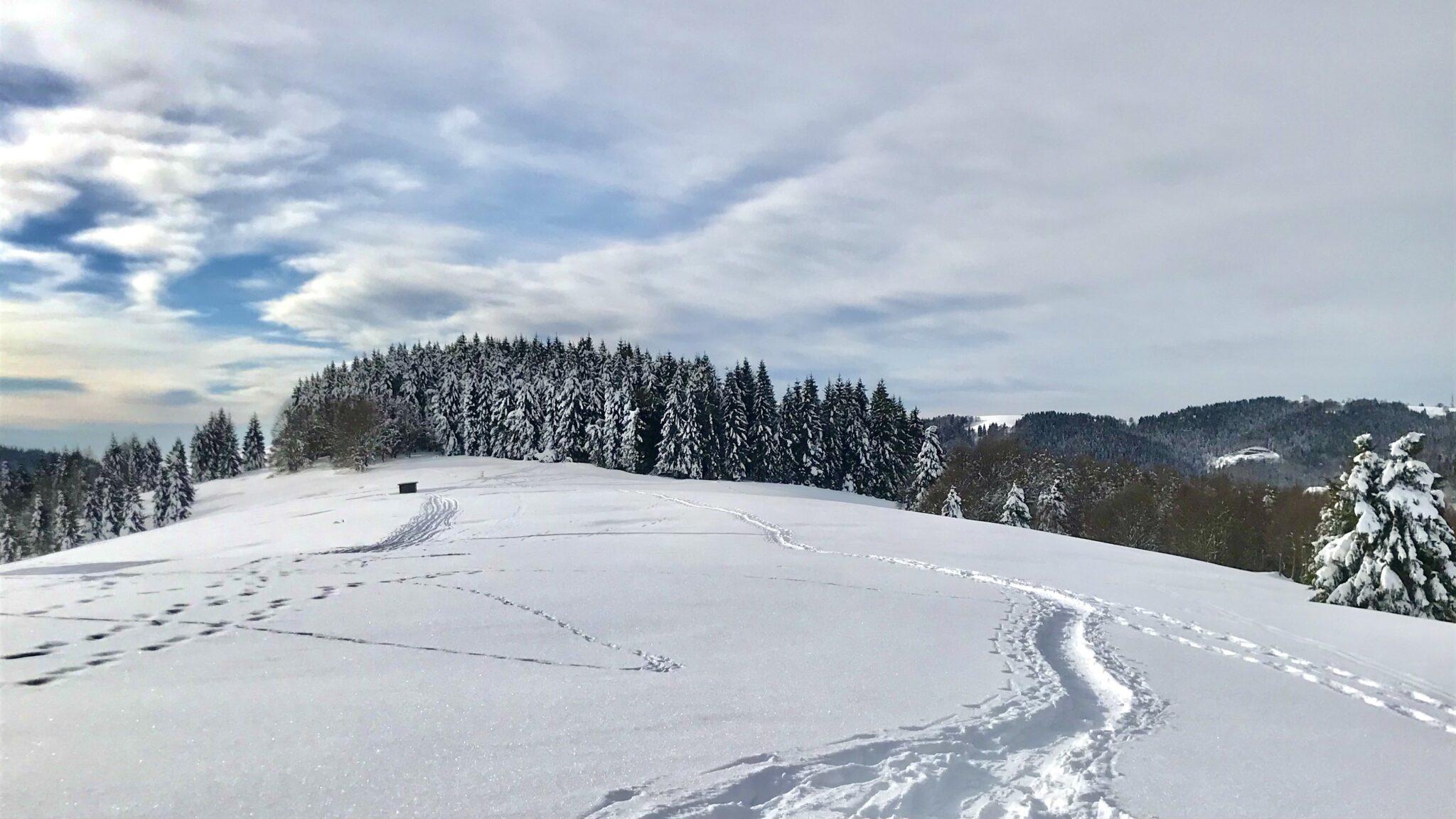 Col del Rosso in inverno