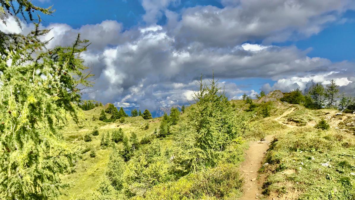 sentiero sul Monte Rite